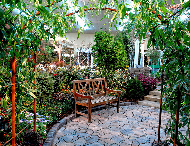 Best fruit and garden trees for your outer space supplified for Outer space garden design clevedon